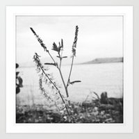 planted by the shore Art Print