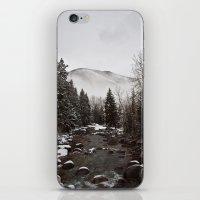 Mid Winter iPhone & iPod Skin