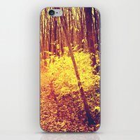 The Golden Hour iPhone & iPod Skin