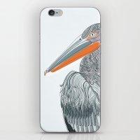 Pelican Island iPhone & iPod Skin