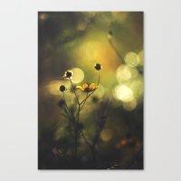 Lucid Dreaming // Sleep Walking Canvas Print
