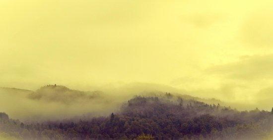 Mystical Fog || Art Print