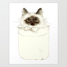 Puss in Pocket (B) Art Print