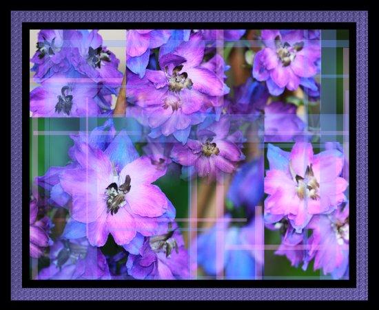 Beautiful Purple And Blue Flowers 2 Art Print