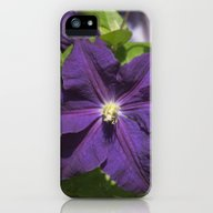 Longwood Gardens - Sprin… iPhone (5, 5s) Slim Case