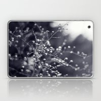 Winter Aster In Black An… Laptop & iPad Skin