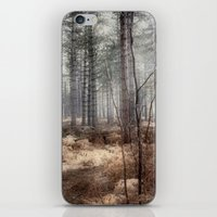 Pale Woods iPhone & iPod Skin