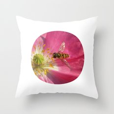 flower fly macro VII Throw Pillow