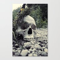 Skulled Canvas Print