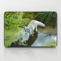 Get Your Feet Wet iPad Case