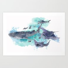Star Sharks & Rays Art Print