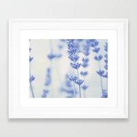 Framed Art Print featuring Lavender  by SUNLIGHT STUDIOS  Monika Strigel