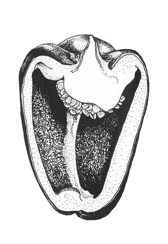 Scary Pepper Art Print