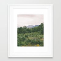 I'm Just A Flower Among … Framed Art Print