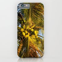 iPhone & iPod Case featuring Palm Tree by Shutterbee Photography