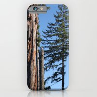 The Old Guard iPhone 6 Slim Case