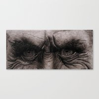 Old Wisdom Canvas Print