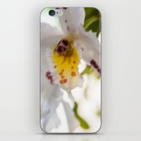 Orchid White iPhone & iPod Skin