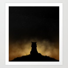 Sunset Cat Art Print