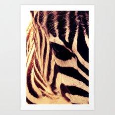 Zazu the Zebra Art Print