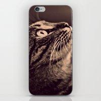 Retro Cat iPhone & iPod Skin