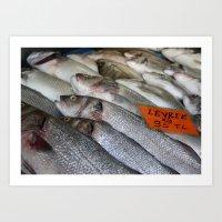 Freshwater Perch For Sal… Art Print
