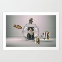 Curiosity Killed The Cat Art Print