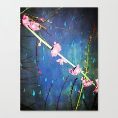Lluvia en Abril Canvas Print
