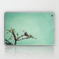 Hummingbird At Rest Laptop & iPad Skin