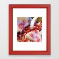 Coconuts & Pomegranates Framed Art Print