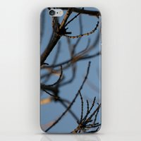 Naked iPhone & iPod Skin