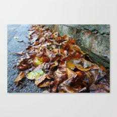 Autumn Patterns #4 Canvas Print