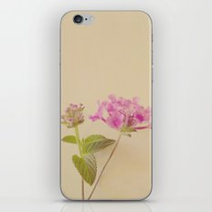 Floral Variations No. 4 iPhone & iPod Skin