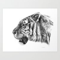 Tiger Profile G077 Art Print