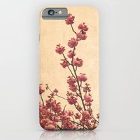iPhone & iPod Case featuring cherry blossoms by Iris Lehnhardt