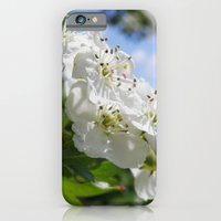 Buds #1 iPhone 6 Slim Case