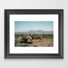 Nevada Desert Scene Framed Art Print
