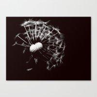 Dandelion Black & White Canvas Print