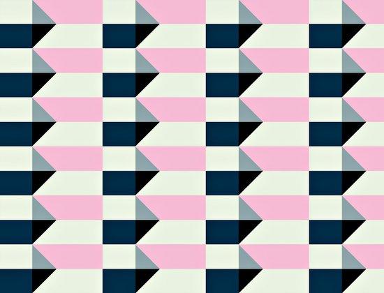 Crispijn Pink & Blue Canvas Print