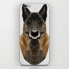 Malinois - Belgian Shepherd iPhone & iPod Skin