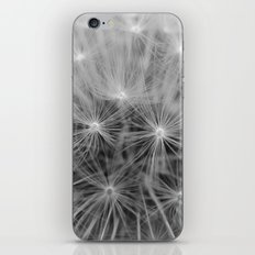 Dandelion No.1 iPhone & iPod Skin