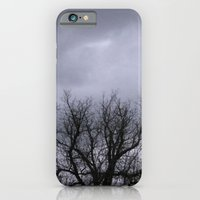 Dusk in the Valley iPhone 6 Slim Case