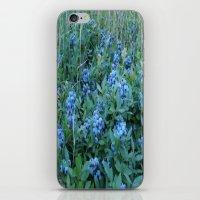 Blueberries  iPhone & iPod Skin