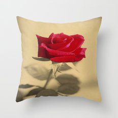 Red Rose Flower Isolated on Sepia Background  Throw Pillow