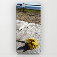 Flower By The Sea iPhone & iPod Skin