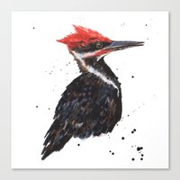 Woodpecker painting, bird paintings, bird lover gift, pileated woodpecker Canvas Print