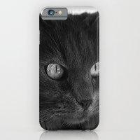 Maggie Pie iPhone 6 Slim Case