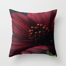 Chocolate Cosmos Flower Throw Pillow