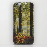 Autumn Wood iPhone & iPod Skin