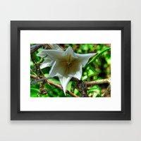 Flower - HDR Framed Art Print